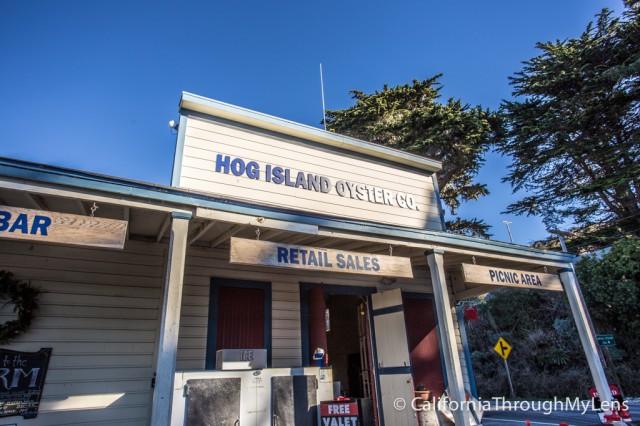 Hog Island-1