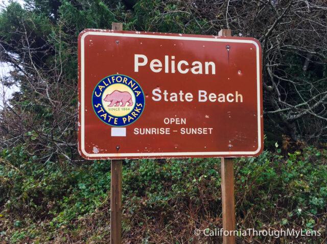 Pelican State Beach-14