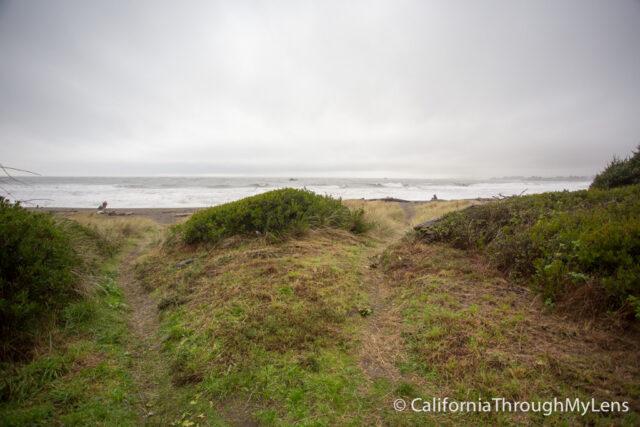 Pelican State Beach-3