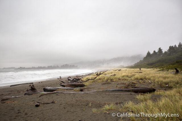 Pelican State Beach-5