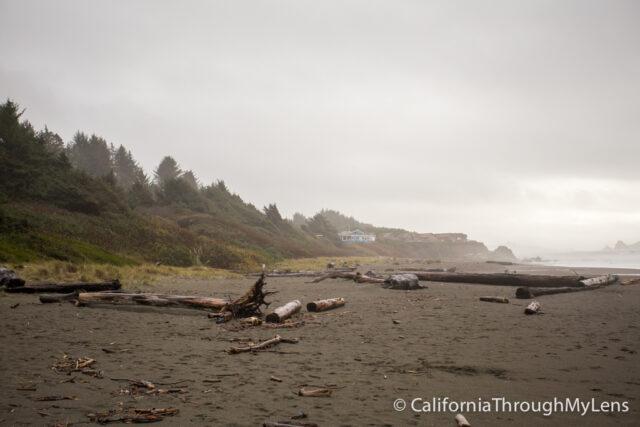 Pelican State Beach-7