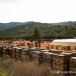 Scotia: Historic Lumber Town & Museum in Humboldt County
