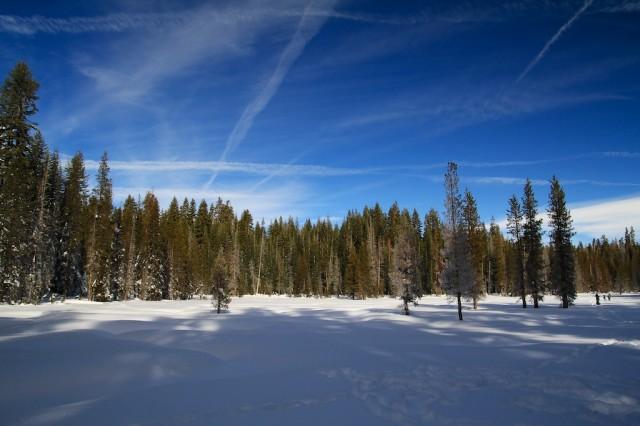 Yosemite-Snowshoe-12