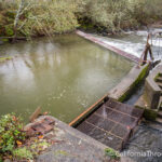 Rowdy Creek Fish Hatchery on the Smith River