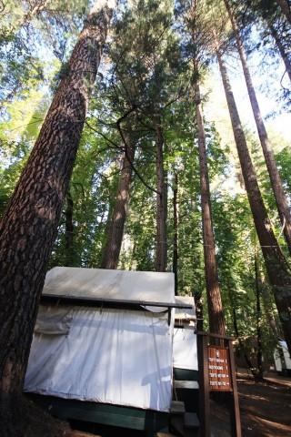 Half Dome Village Curry Village Review Yosemite S