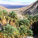 Hellhole Canyon Hike in Anza Borrego