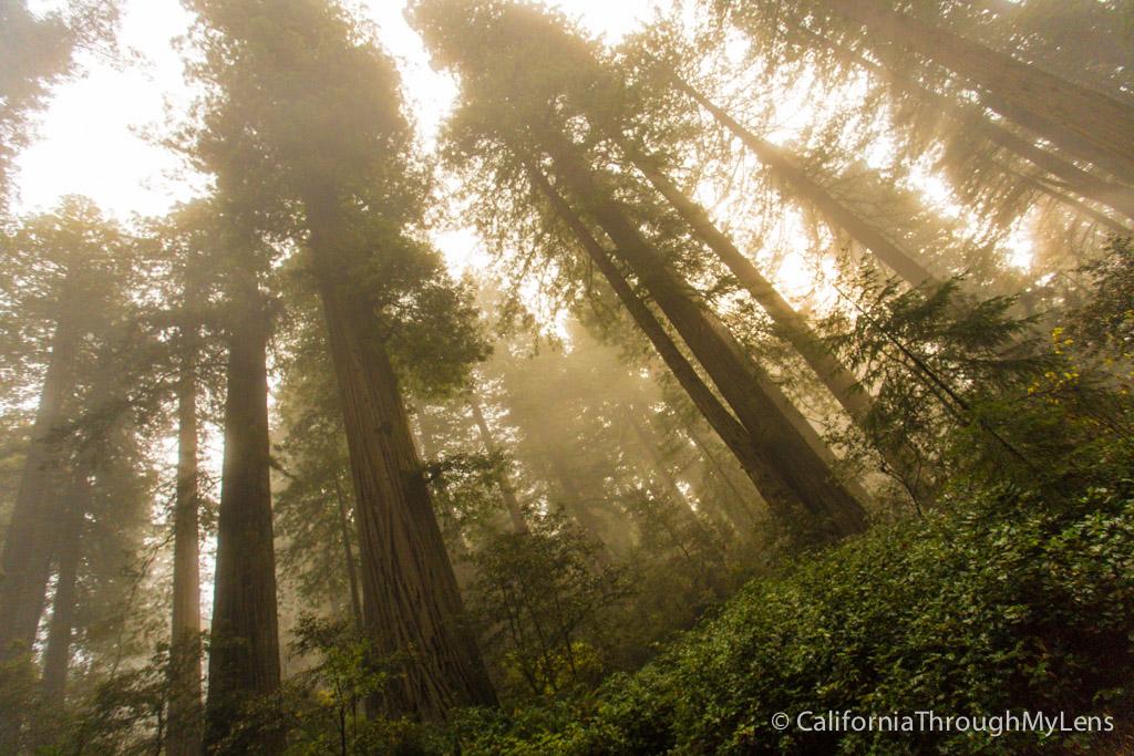Yosemite National Park California - United States - World