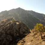 Hiking North Peak & Mt Olympia in Mt Diablo State Park