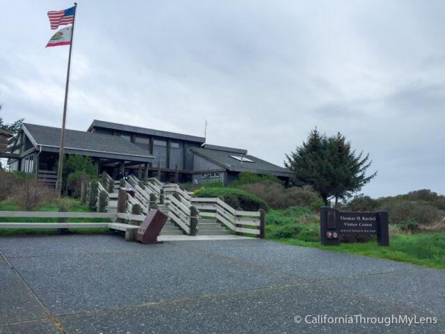 Redwoods Visitor Center-1