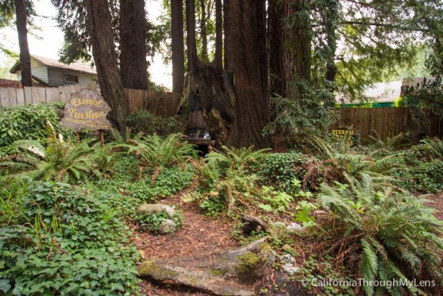 external treehouse-1