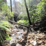 Holy Jim Falls: Hiking in Orange County