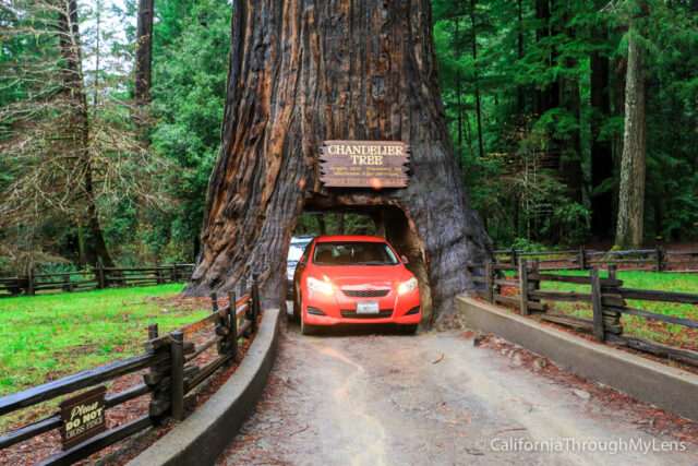 Pacific Coast Highway Where To Stop On Your Road Trip