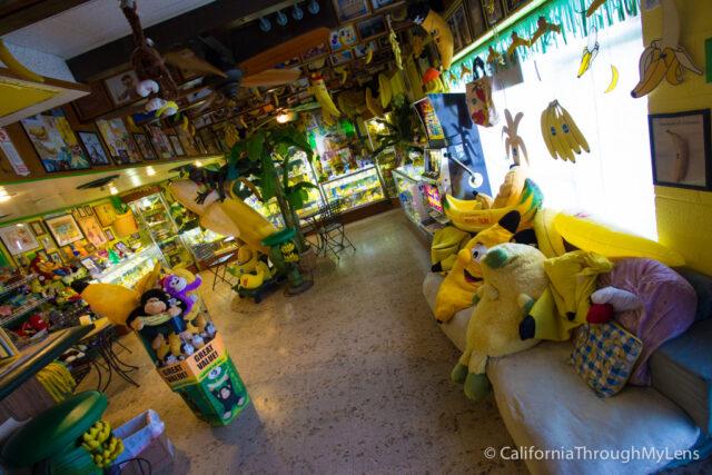International Banana Museum-11