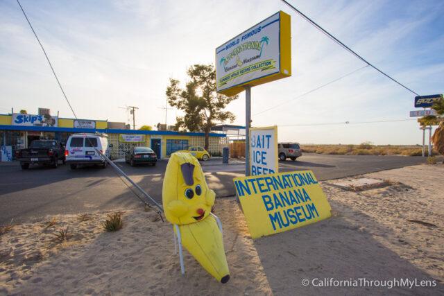 International Banana Museum-19