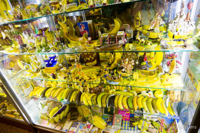 International Banana Museum-4