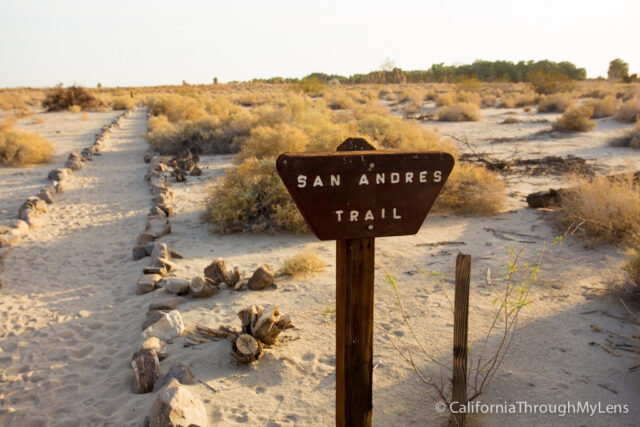 San Andres Trail-1