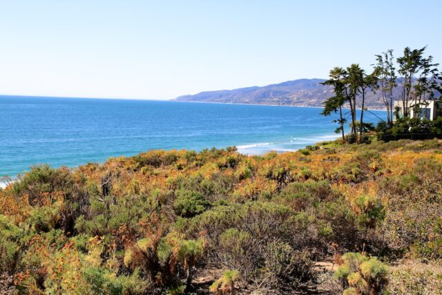 Point-Dume-Malibu