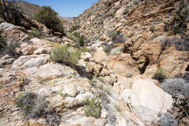 Goat Canyon Trestle-13