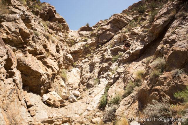 Goat Canyon Trestle-16