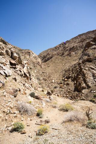 Goat Canyon Trestle-26