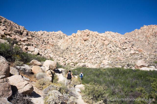 Goat Canyon Trestle-4
