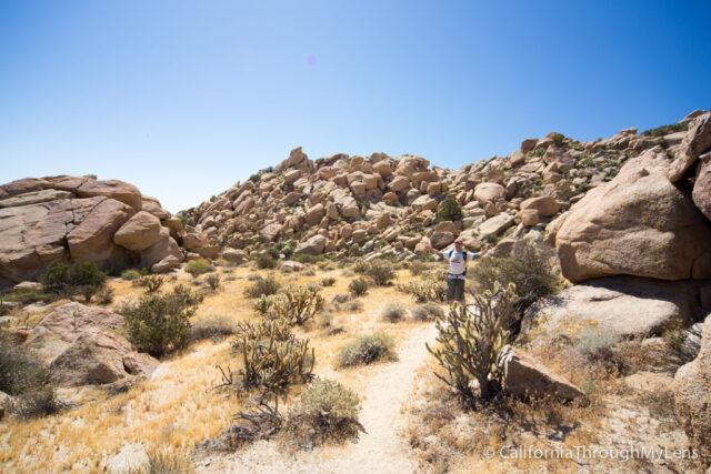 Goat Canyon Trestle-9