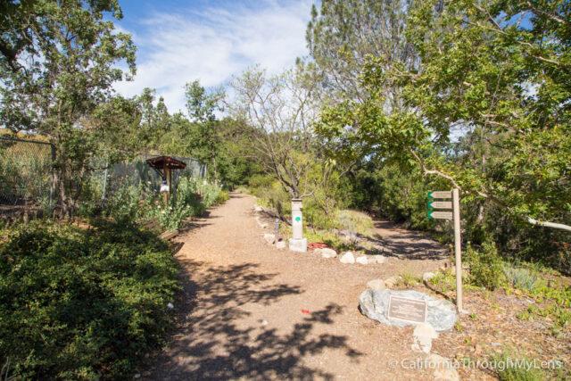Conejo Valley Botanic Garden-19