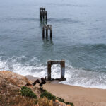 Davenport Pier: An Abandoned Pier that is a Photographer's Dream