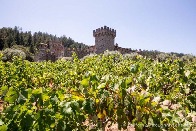 Castello di Amorosa-26
