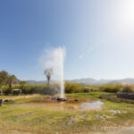 Old Faithful Geyser of California: A Unique Attraction in Calistoga