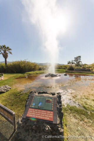 Old Faithful Geyser-9
