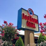Dog House Grill: A Great Place to Eat & Hang Out in Fresno