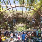 Vineyard Farmers Market in Fresno