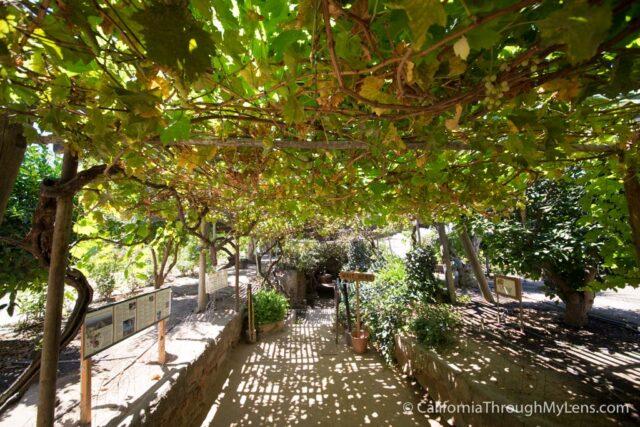 forestiere underground gardens-22