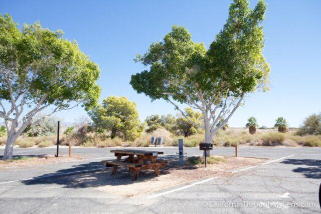 Salton Sea State Park-3-2