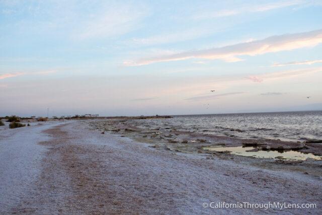 Salton Sea State Park-8