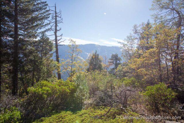 Sugarbowl Trail-6