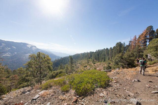 Sugarbowl Trail-8