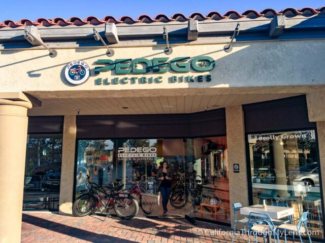 Pedego Electric Bike Tour-16