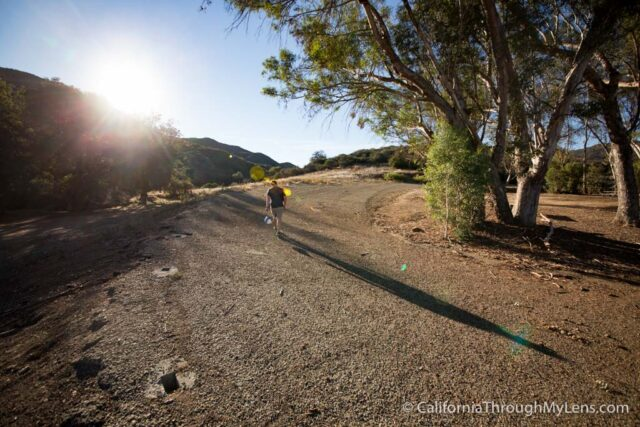 Pedego Electric Bike Tour-6