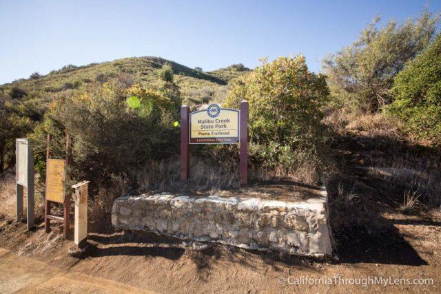 Puerco Canyon-1