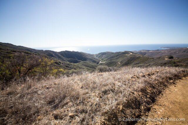 Puerco Canyon-13