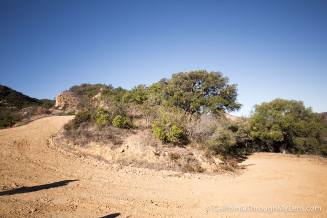 Puerco Canyon-7