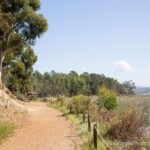 Batiquitos Lagoon Trail: Easy, Beautiful Hiking in Carlsbad