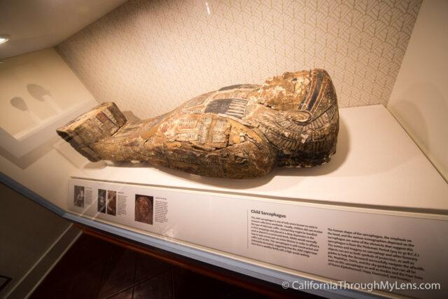 Museum of Man-15