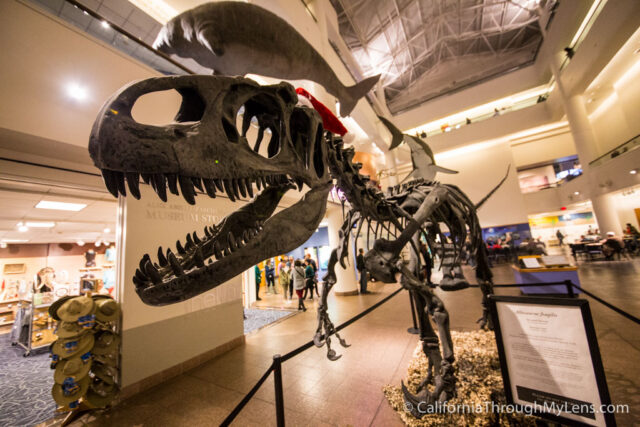 Natural History Museum San Diego-13