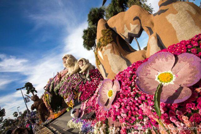Rose Parade Floats-16