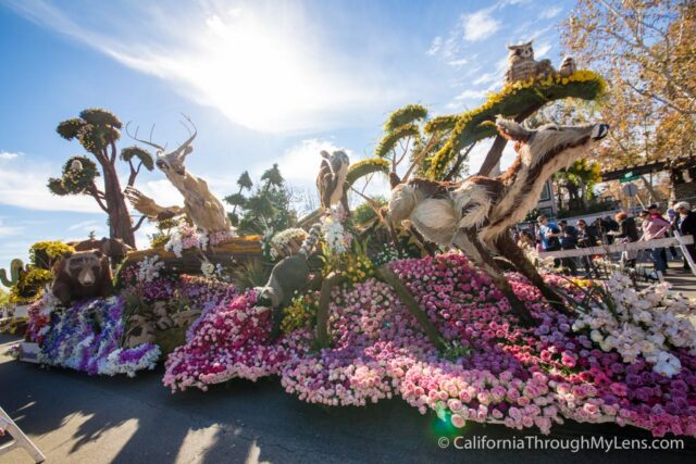 Rose Parade Floats-24