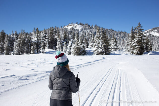 Cross Country Skiing Bear Valley-2