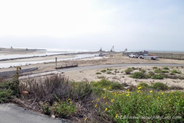 Biking Huntington Beach-14